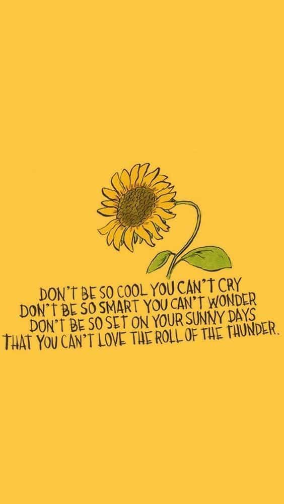 Imagen de yellow, quotes, and sunflower