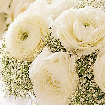 A beautiful centerpiece created with two of the top trending flowers for 2014: Ranunculus and Baby's Breath. A fantastic white on white arrangement which is both eye-catching and affordable.