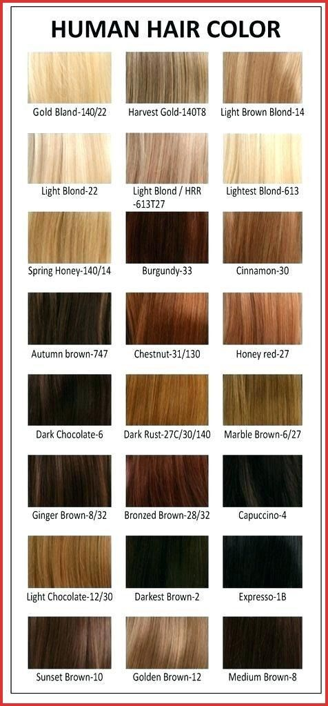 Argan Oil Semi Permanent Hair Color 156321 Luxury Argan Oil Color Chart Hair Color Chart Permanent Hair Color Argan Oil Hair Color