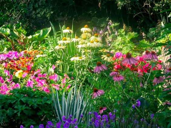 how to design a perennial flower bed
