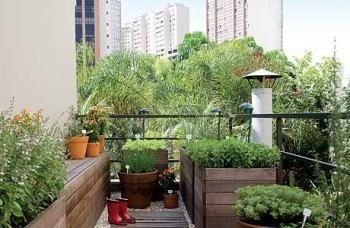 Horta doméstica é opção para alimentos frescos e orgânicos