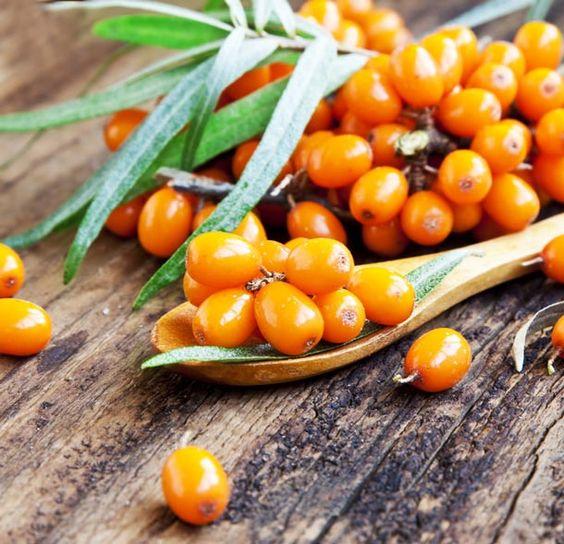 Das Vitamin-C Nahrungsmittel die Sanddorn-Beere
