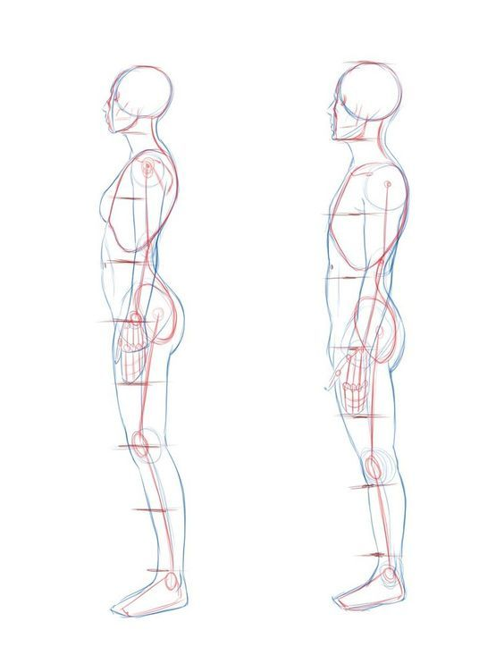 Side View Woman And Male Figure Drawing Reference Figure Drawing Body Reference Drawing