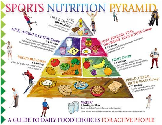 Sports Nutrition Chart – What To Include In Your Diet?