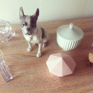 Instagram photo by nicolinelykkee - Dog from Royal Copenhagen. #royalcopenhagen  #bingoggroendahl
