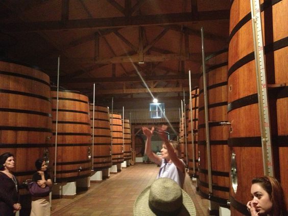 seriously large wooden tanks in Bordeaux