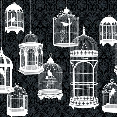 PrettyOrganizedPalace: Bird cages that Make your Heart Sing! A Party Invite