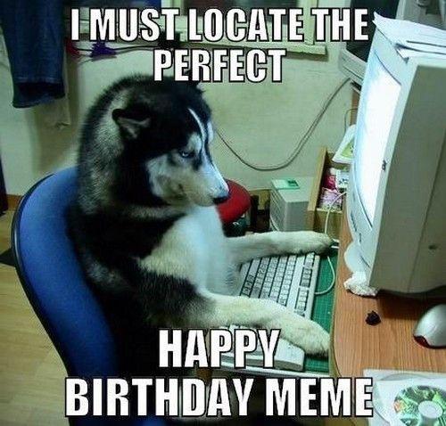 Happy Birthday Memes Dog 20 Best Ideas Birthday Meme Dog Funny Animals With Captions Birthday Meme Dog Husky Funny