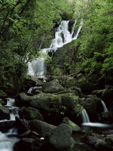 Torc Waterfall, Killarney, County Kerry, Munster, Eire (Republic of Ireland) Photographic Print by Roy Rainford at AllPosters.com