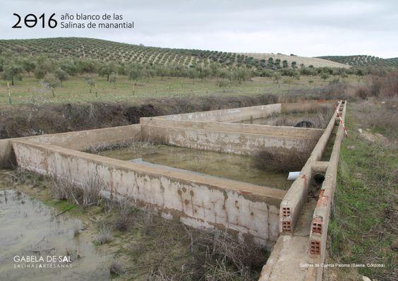 Calentador de la salina de Cuesta Paloma (Baena, Córdoba)