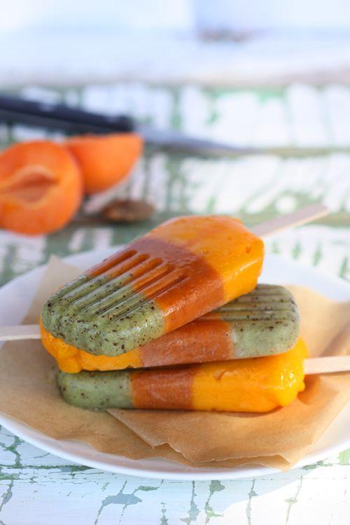The Spunky Coconut: Kiwi Apricot & Mango Pops