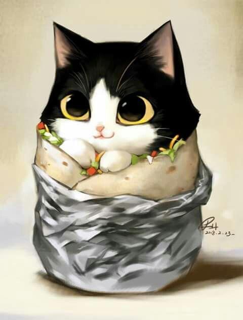 Its A Purrito Cute Cat Drawing Kawaii Drawings Cute Baby Animals