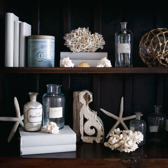 dark shelves with white coral.