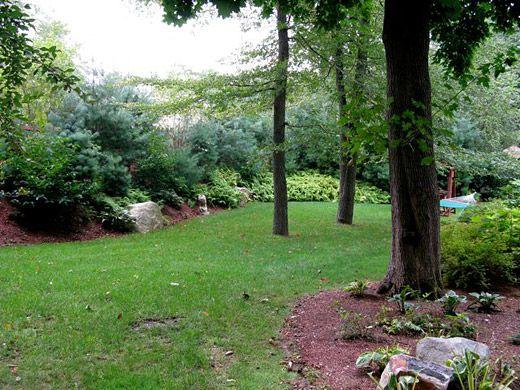 privacy landscaping backyard privacy backyard retreat backyard design