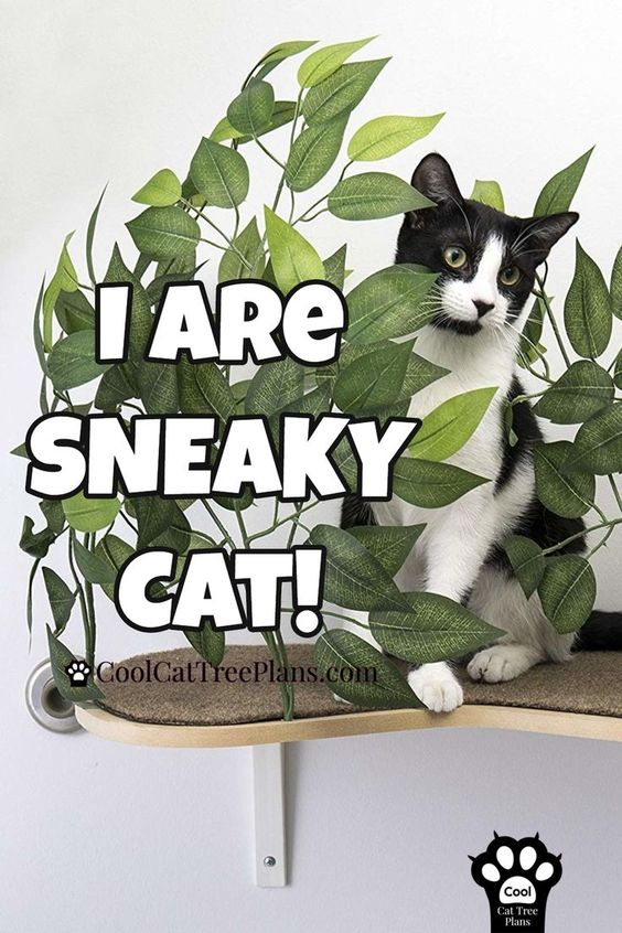 Cat Perch With Pretty Silk Leaves Cool Cat Tree Plans Cool Cat Trees Cat Tree Plans Funny Cat Gifts