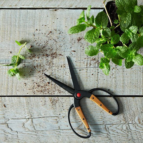 Garden Scissors on Food52: http://food52.com/provisions/products/964-garden-scissors #Food52