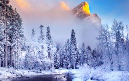 Winter - Winter Wallpaper ID 1196412 - Desktop Nexus Nature