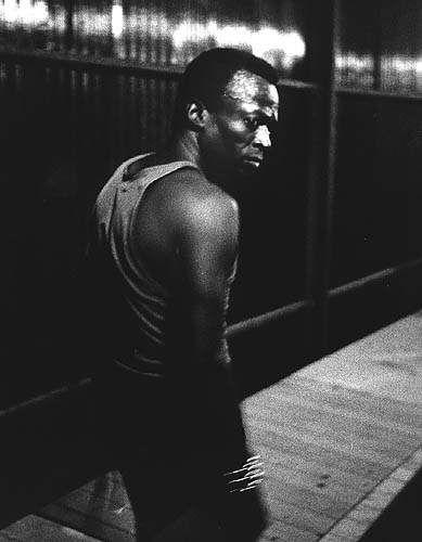 Mr. Miles Davis