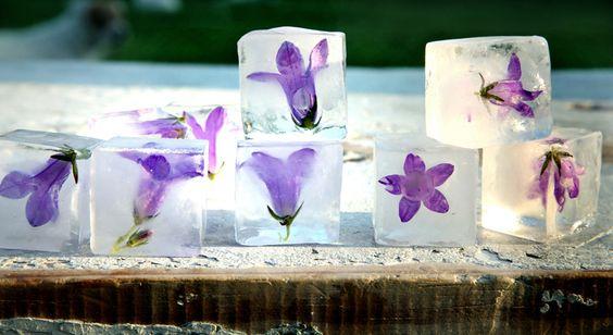 Infusiones, frutas, zumos y flores transformadas en cubitos de hielo en http://monkeyzen.com