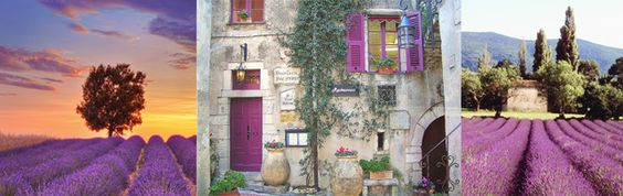 Feel like going to study in Provence?  a totally enchanting place where café-sitting, people-watching, and boutique shopping are the savoir vivre that sweetens your days.