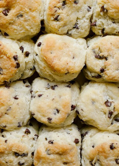 Cream Cheese Chocolate Chip Biscuits
