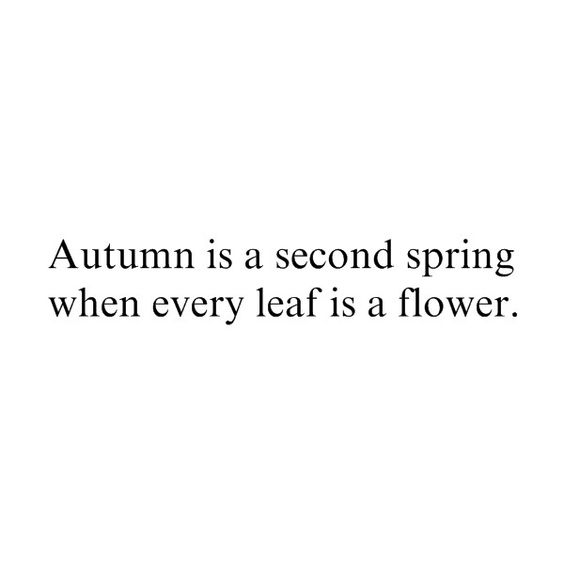 autumn quote by {fairytale asylum}