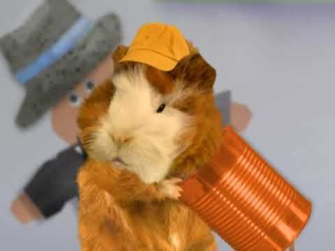 The Wonder Pets Save The Rat Pack Ep14 Youtube In 2020 Wonder Pets Pets Wonder
