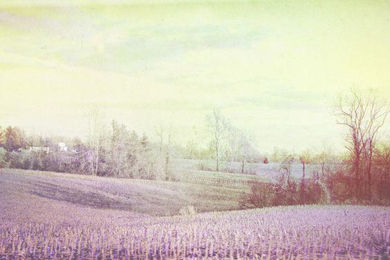 Altered state // landscape // photo manipulation