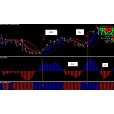 Black system trading forex the trader dog 99
