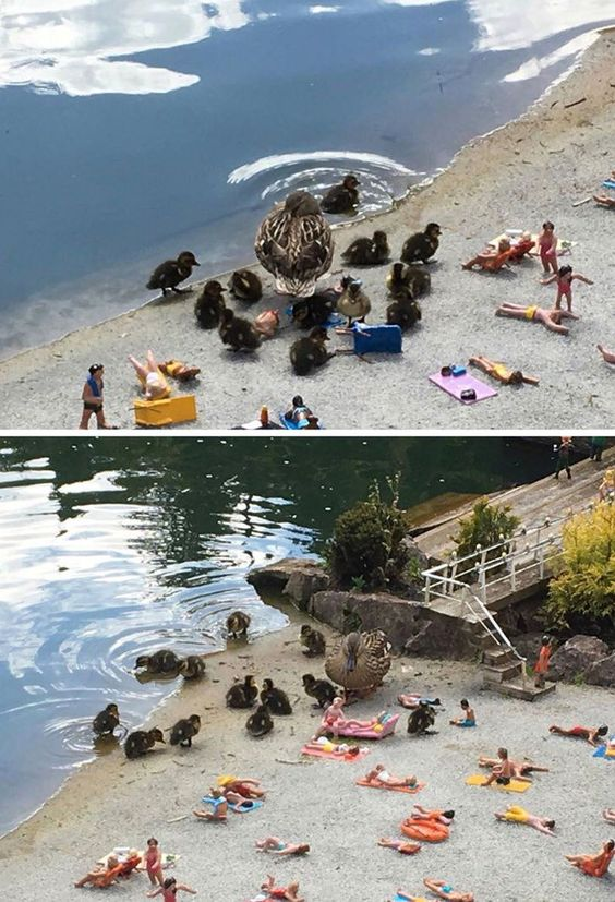 24 απίστευτες φωτογραφίες που πρέπει να δεις και δεύτερη φορά (Μέρος 1)