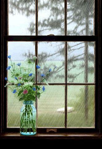 Rainy Day rain flowers animated window gif