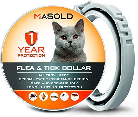 Masold Flea Collar For Cats 12 Months Protection Flea Tick Collar Adjustable Safe And Waterproof Cat Flea Control Collar Al Cat Fleas Flea Control Fleas
