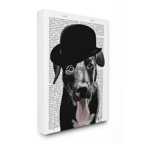 Stupell 'Black Labrador in Bowler Hat With Book Page Background' Stretched Canvas Wall Art