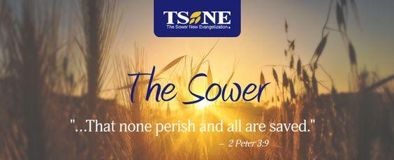 ESNE El Sembrador Nueva Evangelización The Sower en Ingles