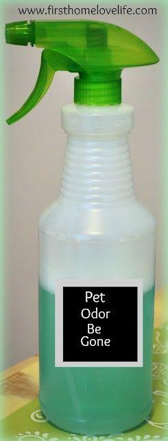 Homemade Pet Odor Eliminator. 1 part Listerine, 2 parts water, peroxide and vinegar!