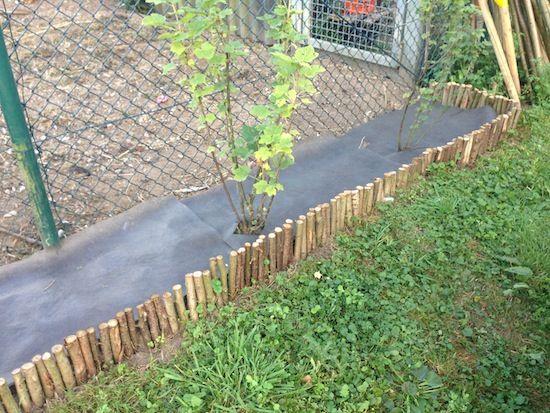 Diy Beeteinfassung Aus Holz Beeteinfassung Gartengestaltung Betongarten