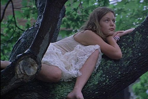 The Virgin Suicides:
