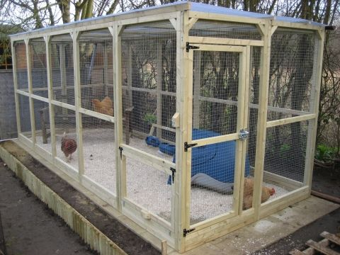 Construction Details For Walk In Chicken Run Chickens