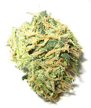 Time to Decriminalize Marijuana