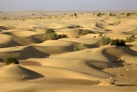 sam desert jaisalmer