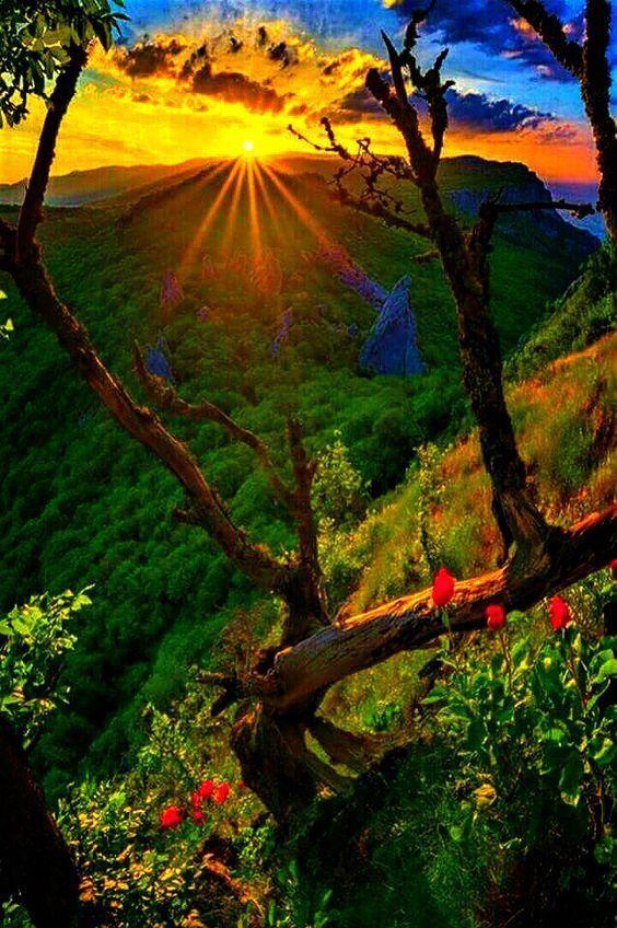 Lovely I Like Nature Photography Beautiful Landscapes Nature