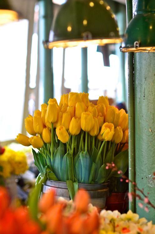 so pretty.  yellow tulips, green walls and lighting