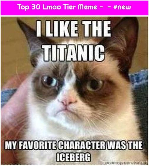 Top 30 Lmao Tier Meme New Funny Grumpy Cat Memes Grumpy Cat Humor Titanic Funny