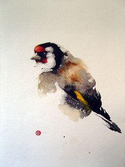 Goldfinch - Karl Mårtens - watercolor