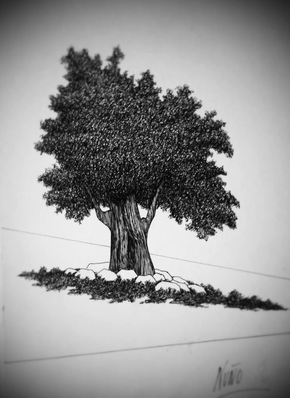 Parace un árbol