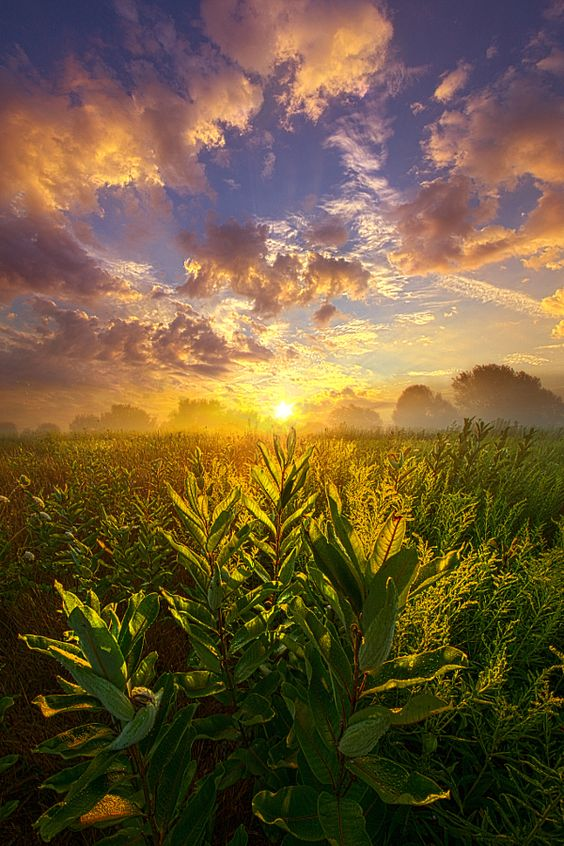 World Without End by Phil Koch - Photo 167997977 - 500px