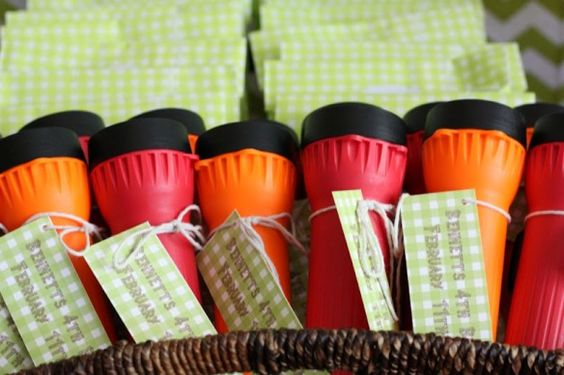 camping party decor: favors and activities, campfire