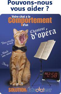 Pouvons-nous vous aider ? Votre chat a le comportement d'un chanteur d'opéra