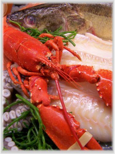 fischmarkt-burbach.info Fisch richtig zubereiten...