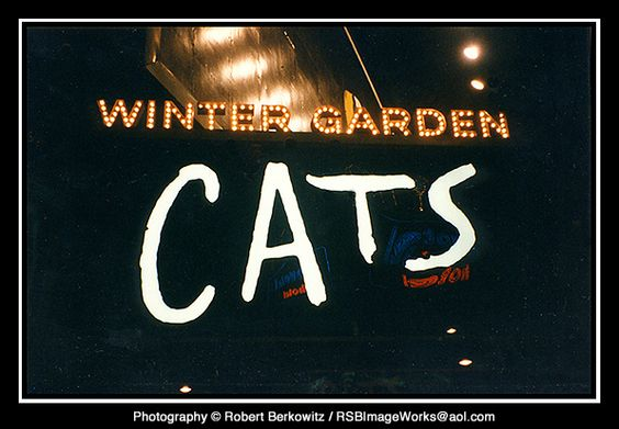 cats set winter garden theater